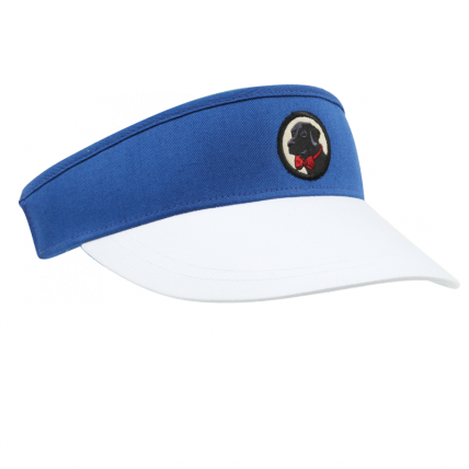 Blue and White Visor